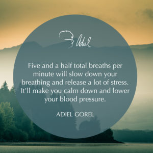 Breathing Can Drastically Improve Your Health – Adiel and Chad Discuss